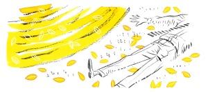 hojas amarillas 4